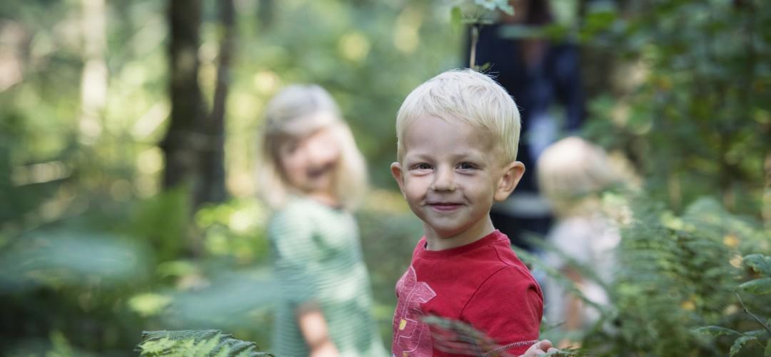Gutt i skogen